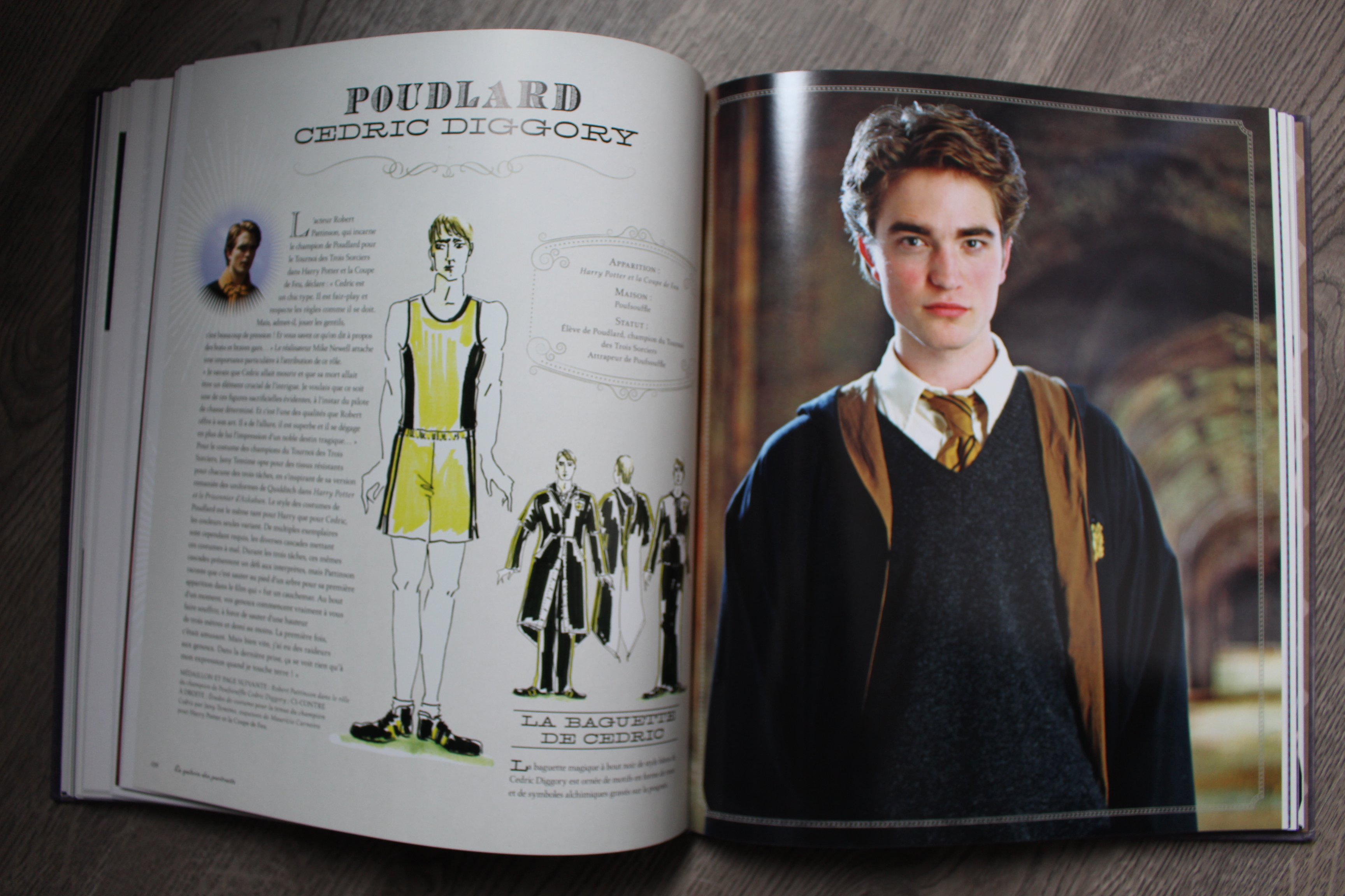 Harry potter la galerie des portraits la croque livres - Harry potter livre pdf gratuit ...